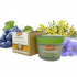 Rue-Grape Skin Renewal Peeling (66%+ Demeter) - 50 ml